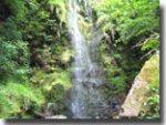 Mallyan Spout waterfall, Goathland