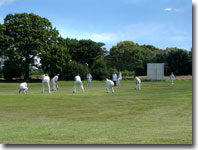 Goathland cricket team batting