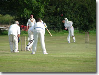 Goathland cricket team fielding