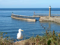 Whitby Jetties
