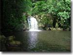 Thomason Foss waterfall, Goathland